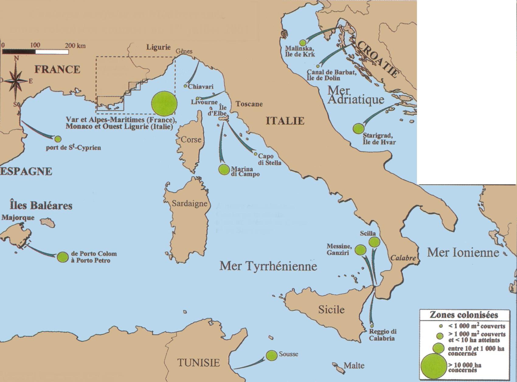 Carte Corse Mediterranee.Carte2